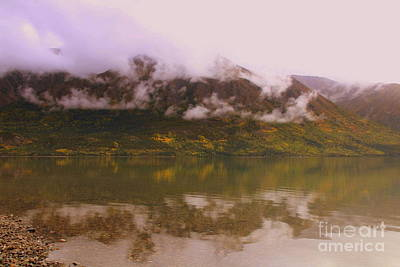 Photograph - Alaskan Image by Lennie Malvone