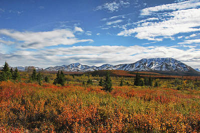 Photograph - Alaskan Landscape In Autumn by Phyllis Taylor