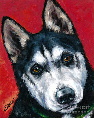 Sled Dogs Painting - Alaskan Malamute Portrait On Red by Dottie Dracos