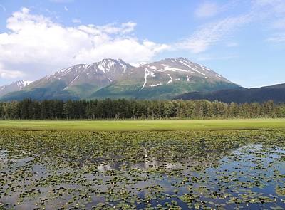 Photograph - Alaskan Mountain Genuflection by Red Cross