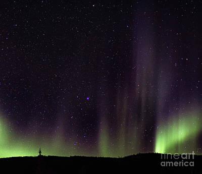 Wall Art - Photograph - Alaskan Northern Lights by Elaine J Hoffman