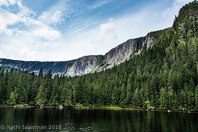 Photograph - Alaskan Wilderness V by Kathi Isserman