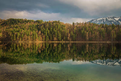 Bavarian Photograph - Alatsee Forest Reflection by Chris Fletcher