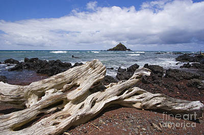 Alau Islet, Driftwood Print by Ron Dahlquist - Printscapes
