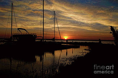 Photograph -  Alba Con Il Mio Tesoro by Diana Mary Sharpton