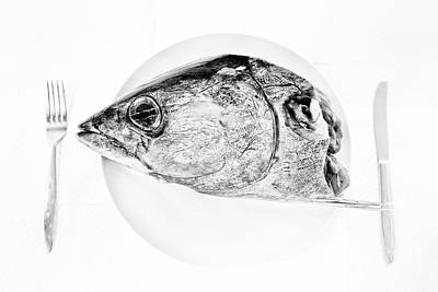 Albacore Tuna Head Art Print by Masako Metz