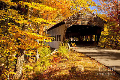 Photograph - Albany Covered Bridge by Brian Jannsen