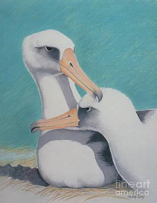 Albatros Love Art Print