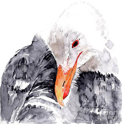 Albatross Painting - Albatross by Claudia Hafner