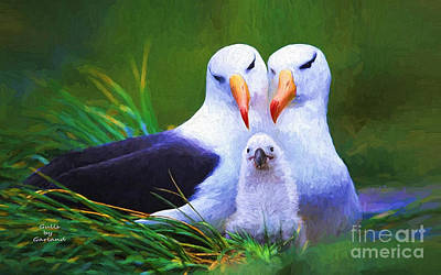 Impasto Painting - Albatross Family  by Garland Johnson