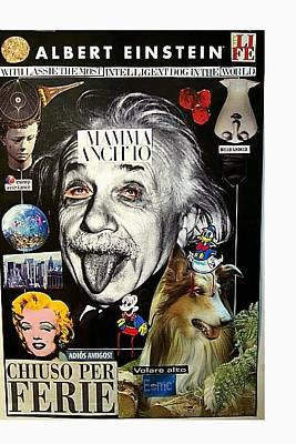 Albert Einstein With Lassie The Most Intelligent Dog In The World Original