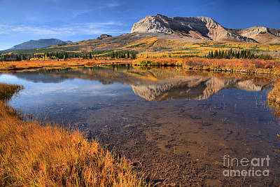 Photograph - Alberta Afternoon Reflections by Adam Jewell