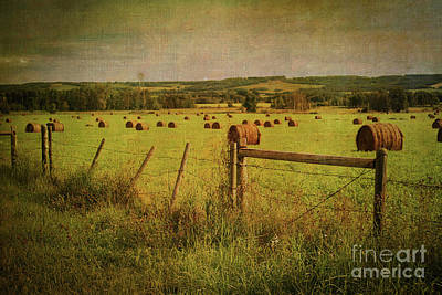 Digital Art - Alberta Countryside by Verena Matthew