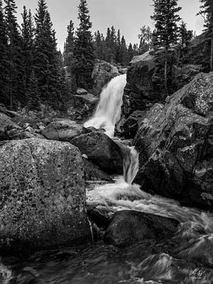 Photograph - Alberta Falls by Aaron Spong