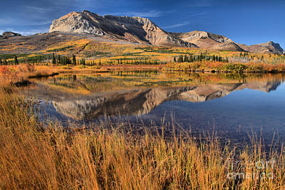 Photograph - Alberta Mountain Reflections by Adam Jewell