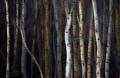 Photograph - Alberta Verticals by Jim Vance