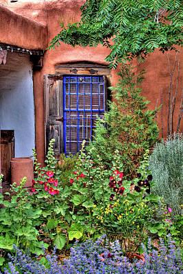 Photograph - Albuquerque Garden by David Patterson