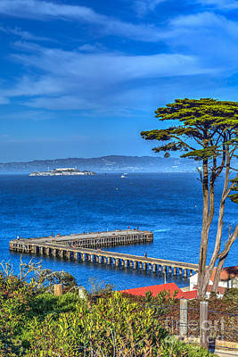 Photograph - Alcatraz Island From Presidio by David Zanzinger