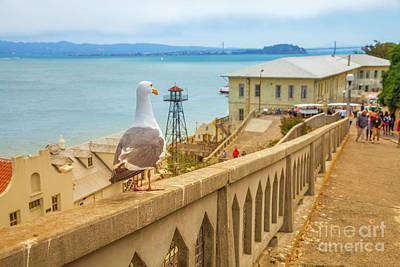 Photograph - Alcatraz San Francisco by Benny Marty