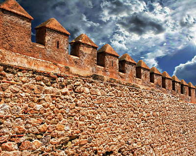 Photograph - Alcazaba Fortress by Anthony Dezenzio