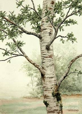 Painting - Alder Tree by Frank Townsley
