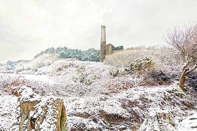 Photograph - Ale And Cake Mine In The Snow by Terri Waters