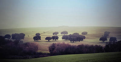Photograph - Alentejo In The Mist by Marion McCristall