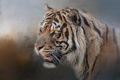 Photograph - Alert Bengal by Jai Johnson