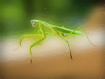 Digital Art - Alert Praying Mantis by Rusty R Smith