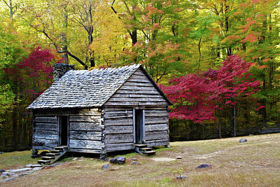 Photograph - Alex Cole Cabin by Lana Trussell