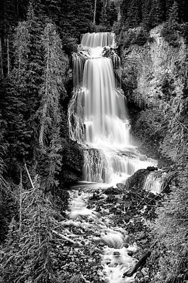 Art Print featuring the photograph Alexander Falls - Bw 1 by Stephen Stookey