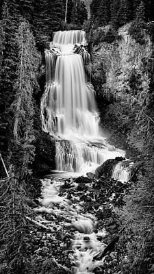 Art Print featuring the photograph Alexander Falls - Bw 2 by Stephen Stookey