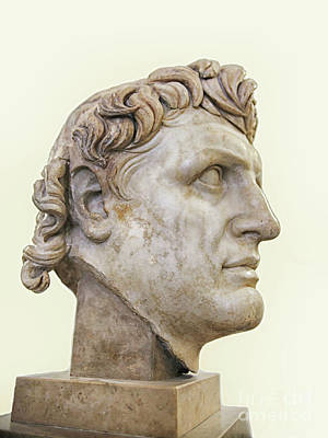 Photograph - Alexander The Great by Patricia Hofmeester