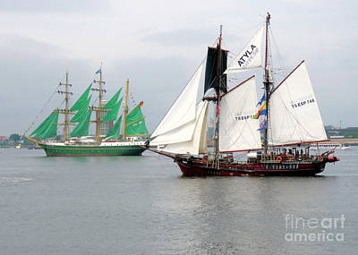 Photograph - Alexander Von Humboldt II And Atyla  by Janice Drew