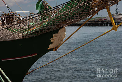 Photograph - Alexander Von Humboldt II Bow by Dale Powell