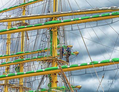 Photograph - Alexander Von Humboldt II by Jim Orr