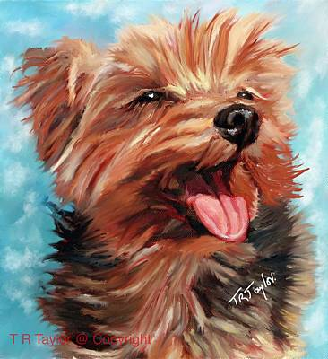 Painting - Alfie by Ralph Taylor