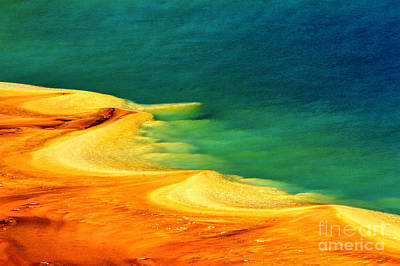 Photograph - Algae On The Edge by Adam Jewell
