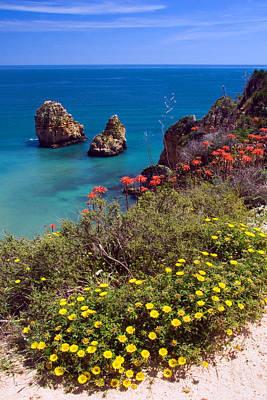 Algarve Coast In Spring Art Print by John McKinlay