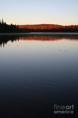 Algonquin First Light Art Print by Chris Hill