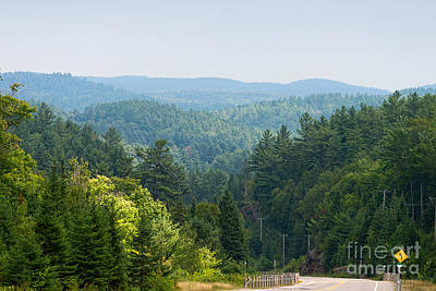 Photograph - Algonquin Highlands by Les Palenik