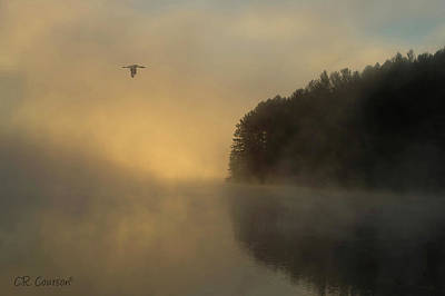 Photograph - Algonquin Morning by CR Courson
