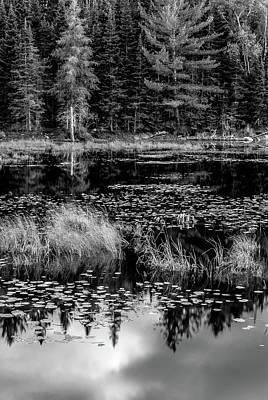 Photograph - Algonquin Pond by Joshua Hakin