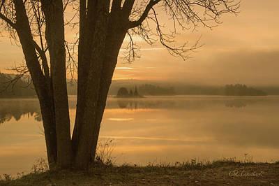 Photograph - Algonquin Sunrise by CR Courson