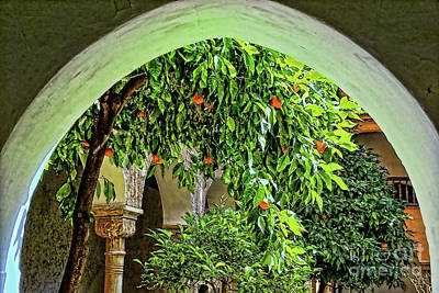 Photograph - Alhambra Oranges by Rick Bragan