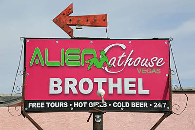 Photograph - Alien Cathouse by Donna Kennedy