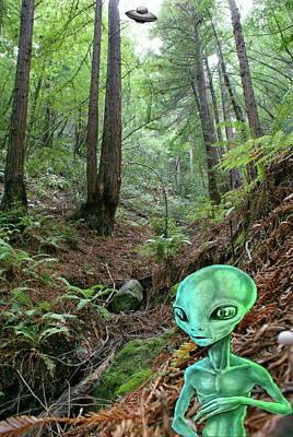 Photograph - Alien In Forest by Ben Upham III