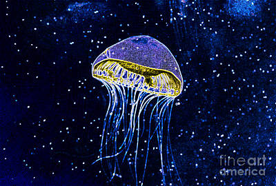 Photograph - Alien Jellyfish by Louise Magno