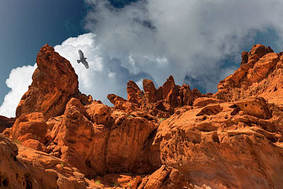 Photograph - Alien Landscape Valley Of Fire by Frank Wilson