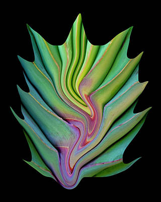 Digital Art - Alien Leaf by Robert Woodward